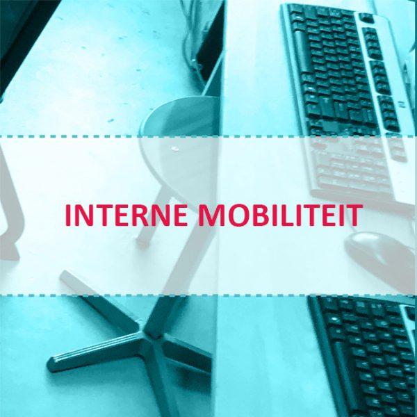 Interne mobiliteit